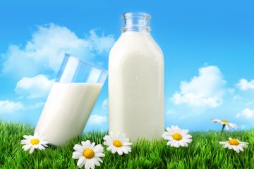 The Pros and Cons of Giving Up Dairy